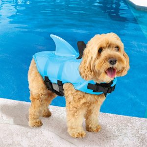 Doggie Swim Vest Shark Shop Pool Supplies | Summer Dog Accessories