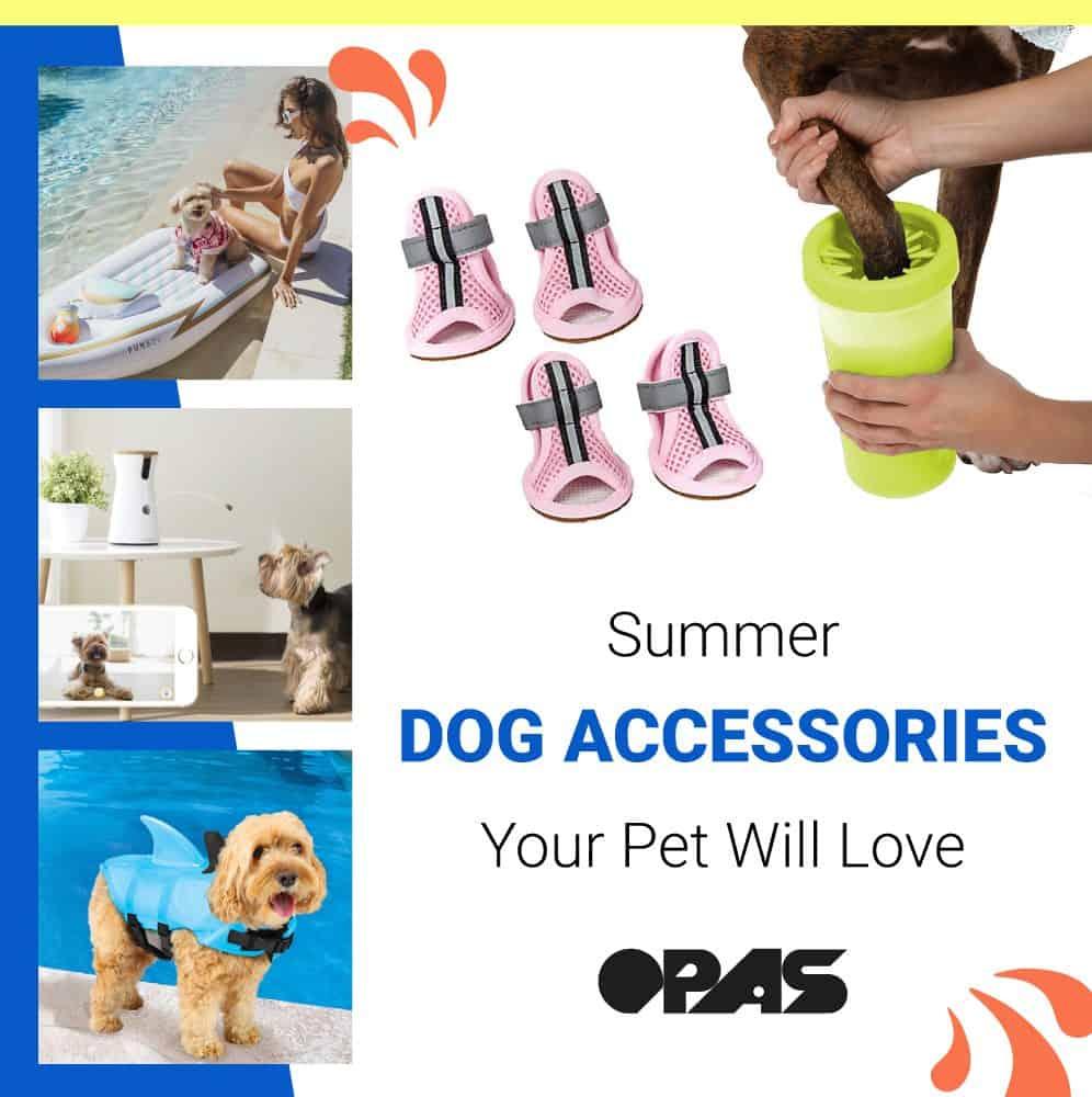 Summer-Dog-Accessories-OPAS-Blog