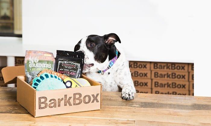 Barkbox Subscription Box | Opas Blog