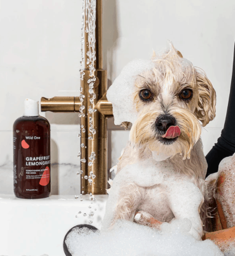 Conditioning dog shampoo